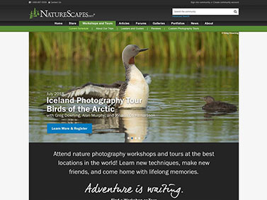 NatureScapes Workshops and Tours - Current Schedule